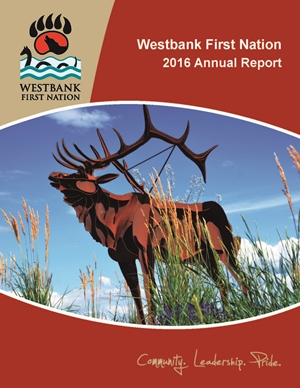 2015-16 Annual Report Cover Page